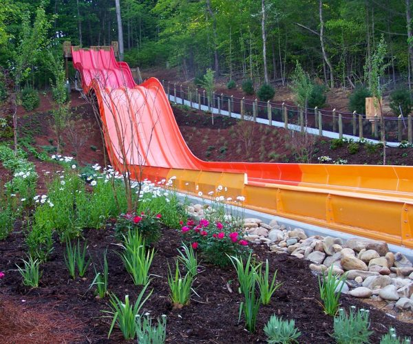 Dollywood_Section (1)
